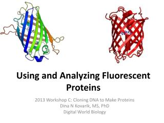 Using and Analyzing Fluorescent Proteins