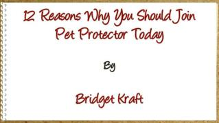 ppt 2002 12 Reasons Why You Should Join Pet Protector Today