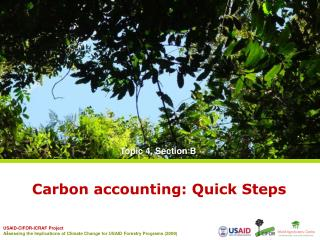 Carbon accounting: Quick Steps