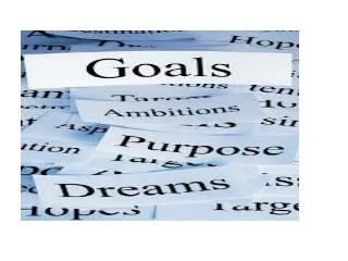 Why Should We Have Goals?