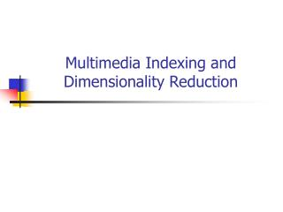 Multimedia Indexing and Dimensionality Reduction