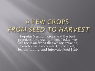 A Few Crops  from seed to harvest