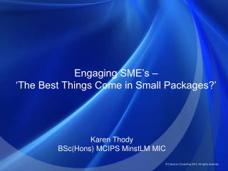 Engaging SME's –  'The Best Things Come in Small Packages?'