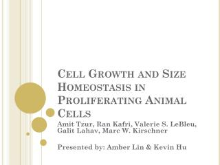 Cell Growth and Size Homeostasis in Proliferating Animal Cells