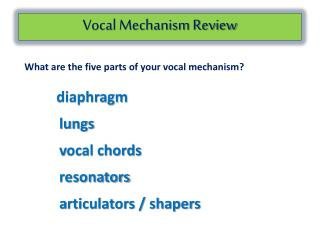 Vocal Mechanism Review