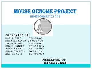 MOUSE GENOME PROJECT BIOINFORMATICS 407