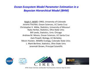 Ocean Ecosystem Model Parameter Estimation in a Bayesian Hierarchical Model (BHM)