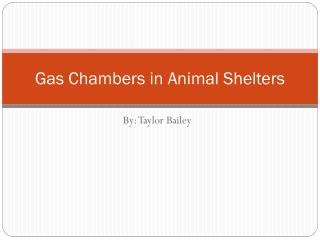 Gas Chambers in Animal Shelters