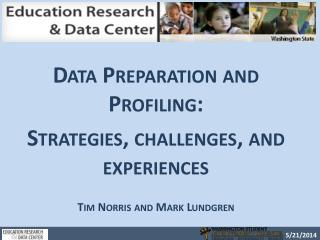 Data Preparation and Profiling: Strategies, challenges, and experiences