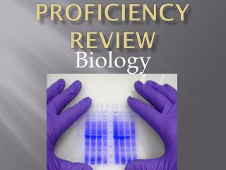 Proficiency Review