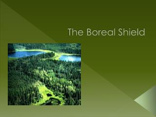 The Boreal Shield