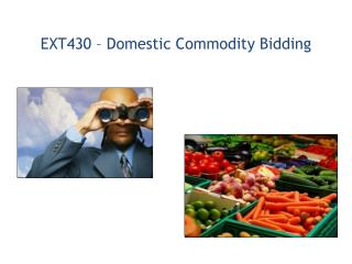EXT430 – Domestic Commodity Bidding