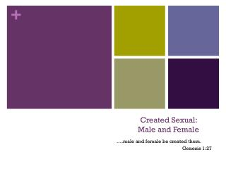 Created Sexual:  Male and Female