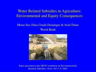Water Related Subsidies in Agriculture:  Environmental and Equity Consequences