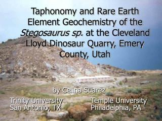 Taphonomy and Rare Earth Element Geochemistry of the  Stegosaurus sp.  at the Cleveland Lloyd Dinosaur Quarry, Emery Cou
