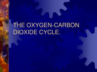THE OXYGEN-CARBON DIOXIDE CYCLE.