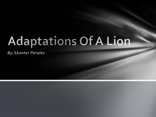 Adaptations Of A Lion