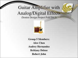 Guitar Amplifier with  Analog/Digital Effects (Senior Design Project Fall/2013)