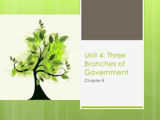 Unit 4: Three Branches of Government