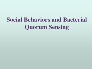 Social Behaviors and Bacterial Quorum Sensing