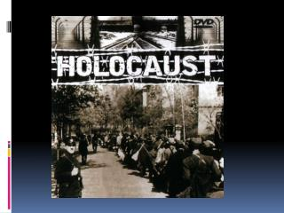 Holocaust: Video Questions