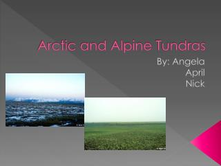 Arctic and Alpine  Tundras