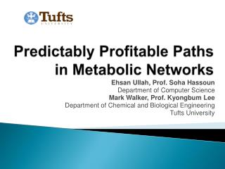 Predictably Profitable Paths in Metabolic Networks