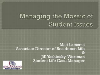 Managing the Mosaic of Student Issues