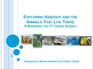 Exploring Habitats and the Animals  T hat Live There A WebQuest for 1 st  Grade Science