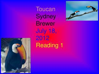 Toucan Sydney Brewer July 18, 2012 Reading 1