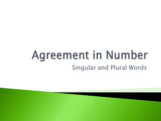 Agreement in Number