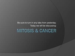 Mitosis & Cancer