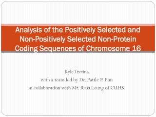 Kyle Tretina w ith a team led by Dr.  Pattle  P. Pun in collaboration with Mr. Ross Leung of CUHK