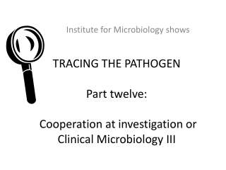 TRACING THE PATHOGEN Part twelve : Cooperation at investigation or Clinical Microbiology II I