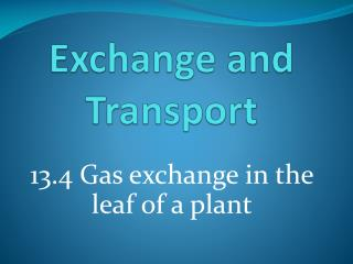 Exchange and Transport