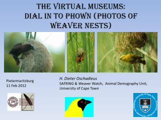 The virtual museums: Dial in to  Phown  (Photos of weaver nests)