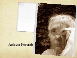 Anisect  Portrait