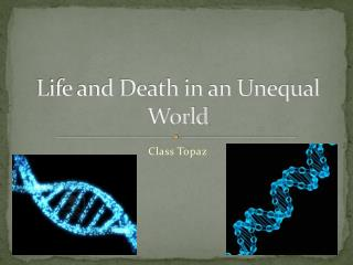 Life and Death in an Unequal World