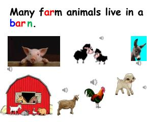 Many f ar m animals live in a .