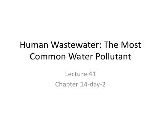 Human Wastewater: The Most Common Water Pollutant