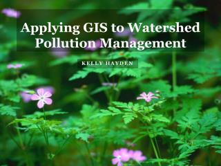 Applying GIS to Watershed Pollution Management