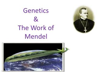 Genetics & The Work of Mendel