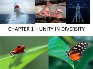 CHAPTER 1  – UNITY IN DIVERSITY