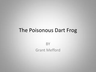 The Poisonous Dart Frog