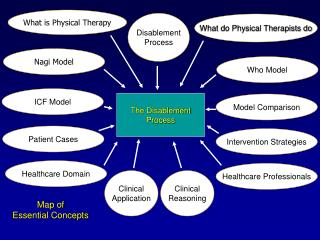 The Disablement Process