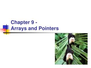 Chapter 9 -  Arrays and Pointers