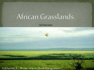 African Grasslands. By Christian Santos