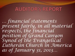 AUDITOR's REPORT
