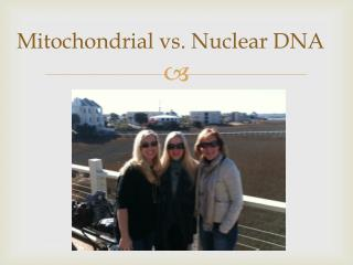 Mitochondrial vs. Nuclear DNA
