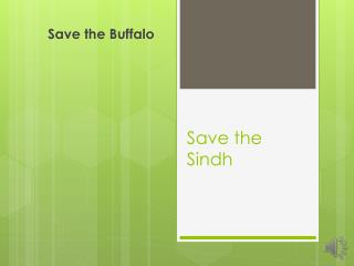 Save the Sindh